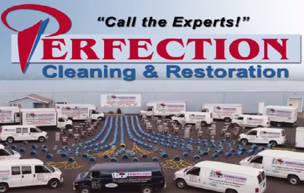 Perfection Services Overview