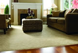 Carpet Cleaning PRO Partners